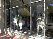window display mannequins wearing bathing suits