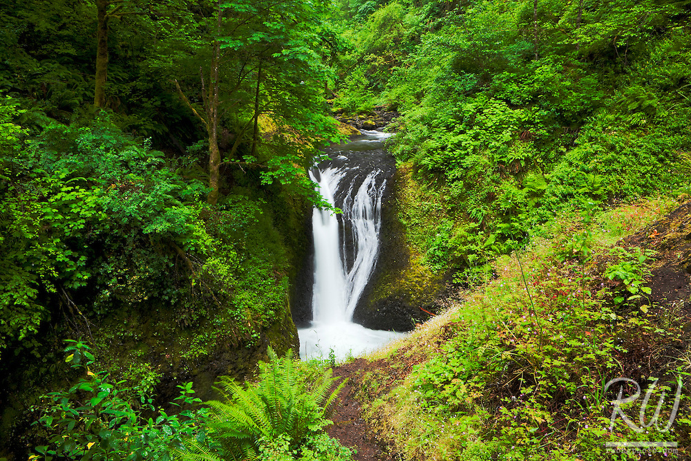 Middle Oneonta Falls, Columbia River Gorge National Scenic Area, Oregon
