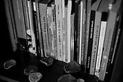 """Cristián Cayupan, Poeta. Estudió Trabajo Social en la Universidad Católica de Temuco. Director de la revista """"Comarca"""", fue miembro del Círculo de Escritores Juvencio Valle, de Nueva Imperial, donde dirigió la revista """"Letras del Sur"""". Comunidad Jose Cayupan, Maquehue, Región de La Araucanía, Chile. 22-04-2018 (©Alvaro de la Fuente/Dialogo)"""