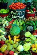 Autumn harvest of vegetables display at the State Fair.  St Paul Minnesota USA