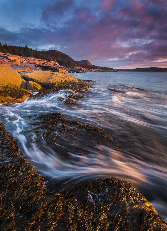 Beautiful sunrise light along the rocky coast of Acadia National Park, Maine