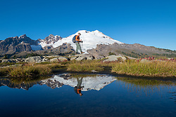United States, Washington, hiker, Mt. Baker and reflection on Park Butte Trail.  MR