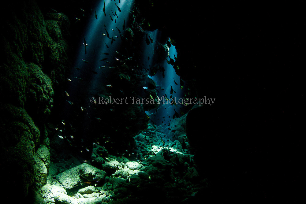Dappled Light in Spooky Channel Honduras