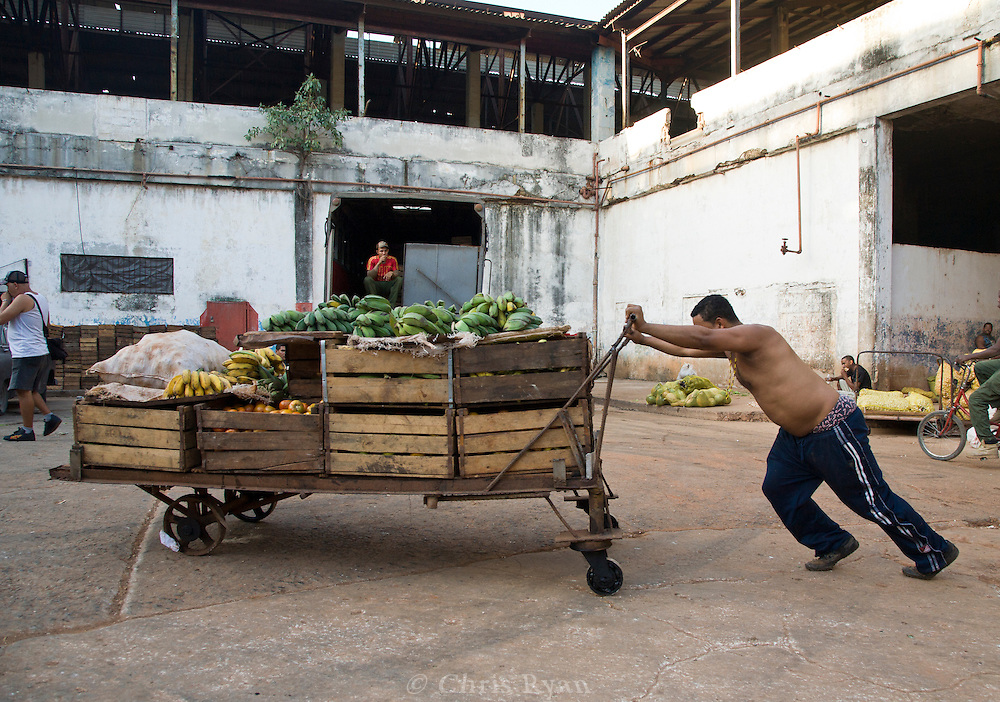 Man pushing produce cart at Mercado Agropecuario Cuatros Caminos, Havana, Cuba
