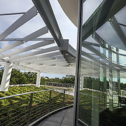 WASHINGTON, DC - SEP9: The roof deck and garden of the new Woodridge Public Library in Northeast, Washington, DC, September 9, 2016. (Photo by Evelyn Hockstein/For The Washington Post)