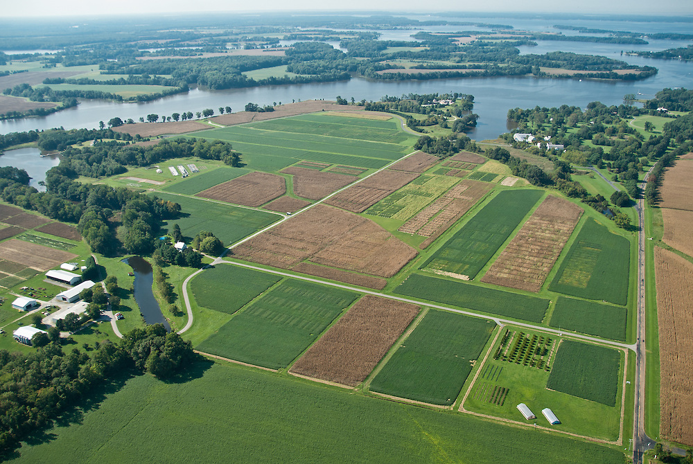 Aerial of farmed plots of land on the Eastern Shore in Maryland
