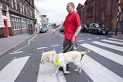 Vision impaired man and guide dog going across a zebra crossing,