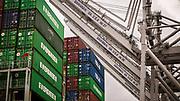 Post-Panamax ship to shore cranes work cargo import and export at the Georgia Ports Authority Port of Savannah at the Garden City Terminal, Thursday, June 29, 2017, in Garden City, Ga.  (GPA Photo/Stephen B. Morton)