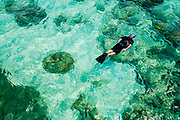 """A tourist swims with a snorkel among severely damaged coral reefs outside Cairns in Australia. On August 11th 2015, the australian conservative Prime Minister Tony Abbott announced the country's climate goal; reduce carbon emissions by 26-28 percent within year 2030. That's well beyond the goals of other countries, and the plan drew immediate criticism from the Foreign Minister of the Marshall Island, Tony  de Brum. """"If the rest of the world followed Australia's lead, the Great Barrier Reef would disappear,"""" he stated. """"So would my country, and the other vulnerable atoll nations on Australia's doorstep."""" Tony Abbott famously declared getting rid of the carbon tax as his greatest achievement for women, claiming the tax cut would save every household 550 australian dollars every year. Australia is a big coal exporter. Of 459 million tonnes coal mined in 2013, more than 335 million tonnes were exported. The Great Barrier Reef off the coast of Queensland in Australia is the largest living colony of organisms on Earth, spanning 2.300 kilometres. An important nursery and food source for marin life, the reefs are now dying due to warmer oceans and acidification due to CO2."""