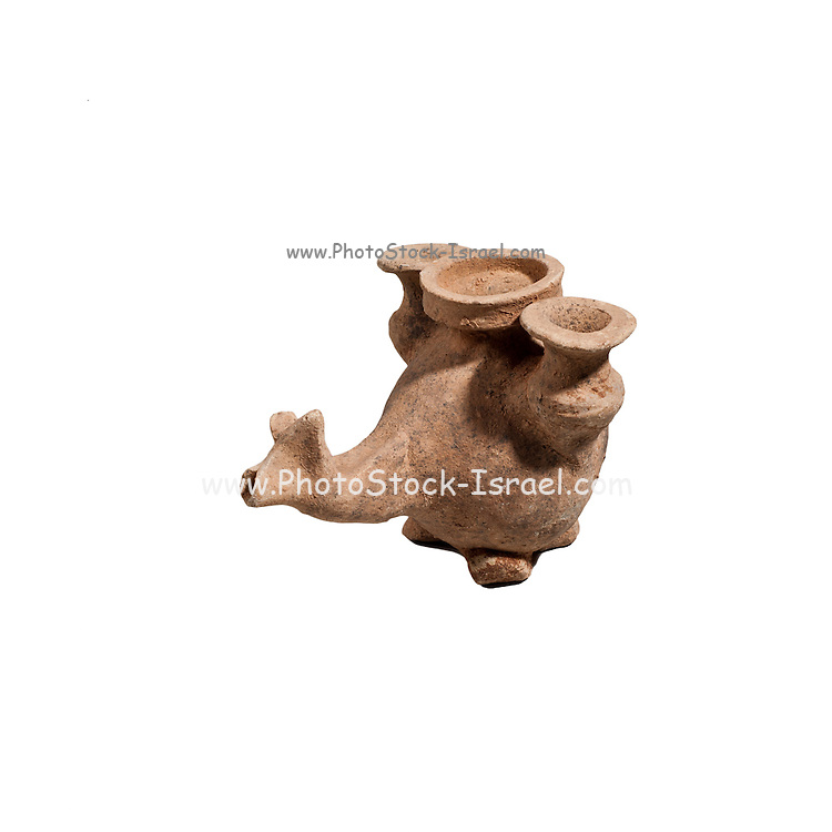 A Nebatean terracotta vessel in the shape of an animal carrying two juga 1sy century BCE