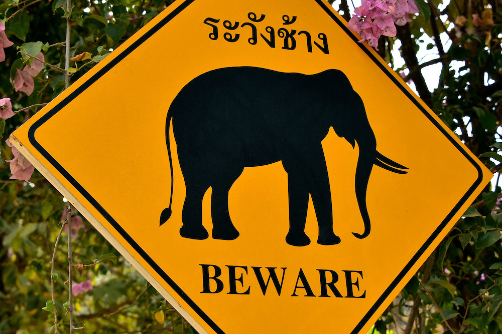 Elephant Crossing Sign in Hang Chat, Thailand<br />