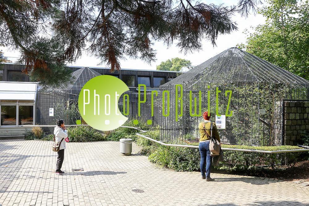 Mannheim. 28.09.17 | 27 Millionen f&uuml;r die Stadtparks<br /> Luisenpark. Bis 2025, wenn die Bundesgartenschau 1975 dann 50 Jahre zur&uuml;ckliegt, sollen in den Luisenpark 27 Millionen Euro investiert werden. Herzst&uuml;ck ist ein neues Erlebniszentrum rund um das Pflanzenschauhaus, das umfangreich modernisiert und ausgebaut werden soll - mit Restaurant, Insektarium sowie einem &uuml;berdachten, geheizten Ruhe- und Entspannungsbereich.<br /> <br /> <br /> BILD- ID 1052 |<br /> Bild: Markus Prosswitz 28SEP17 / masterpress (Bild ist honorarpflichtig - No Model Release!)