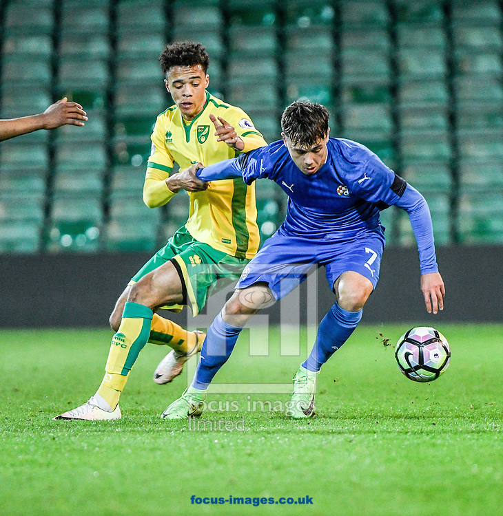 Jamal Lewis of Norwich City U23 v Dinamo Zagreb U23 during the Premier League International Cup Quarter-Final match at Carrow Road, Norwich<br /> Picture by Matthew Usher/Focus Images Ltd +44 7902 242054<br /> 27/02/2017