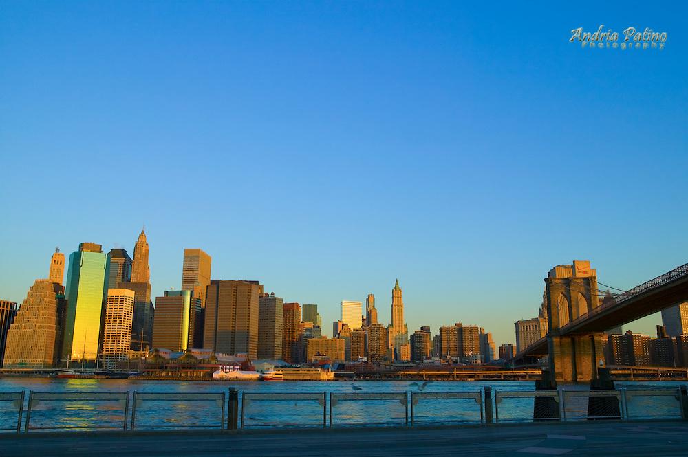 Lower Manhattan skyline and Brooklyn Bridge from Fulton Landing at dawn, Brooklyn