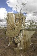 Discarded makeshift backpacks, commonly used by marijuana smugglers entering the United States from Mexico, hang on a fence near Santa Rita Road, Sonoran Desert, Sahuarita, Arizona, USA.
