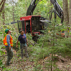 Forester Patrick Ward (left) and logger Bryan Bubar discuss a forest harvesting operation in the Reed Plantation in Reed, Maine.