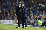 Brighton Manager, Chris Hughton and Fulham First Team Head Coach Slavisa Jokanovic during the EFL Sky Bet Championship match between Brighton and Hove Albion and Fulham at the American Express Community Stadium, Brighton and Hove, England on 26 November 2016.