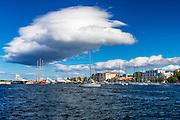 Yachts and sailboats in the harbor, Zadar, Dalmatian Coast, Croatia
