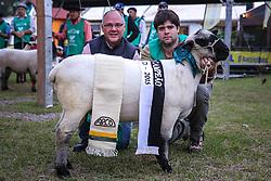 Hampshire Dow na 38ª Expointer, que ocorre entre 29 de agosto e 06 de setembro de 2015 no Parque de Exposições Assis Brasil, em Esteio. FOTO: Pedro H. Tesch/ Agência Preview