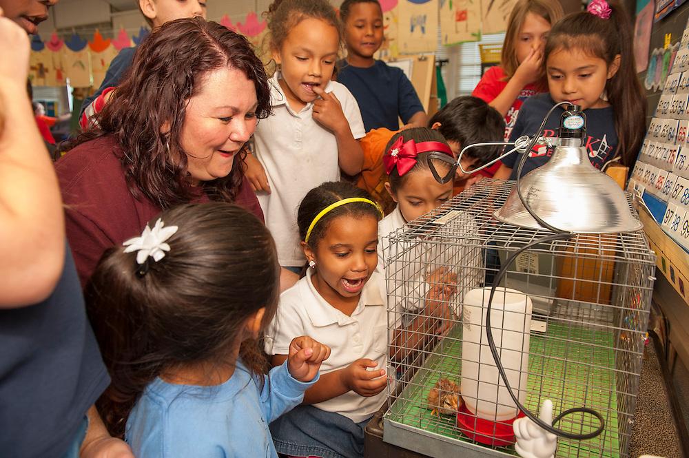 Parker Elementary kindergarten teacher Doris Richardson works with her students, April 19, 2013. Richardson is a finalist for Elementary School Teacher of the Year.