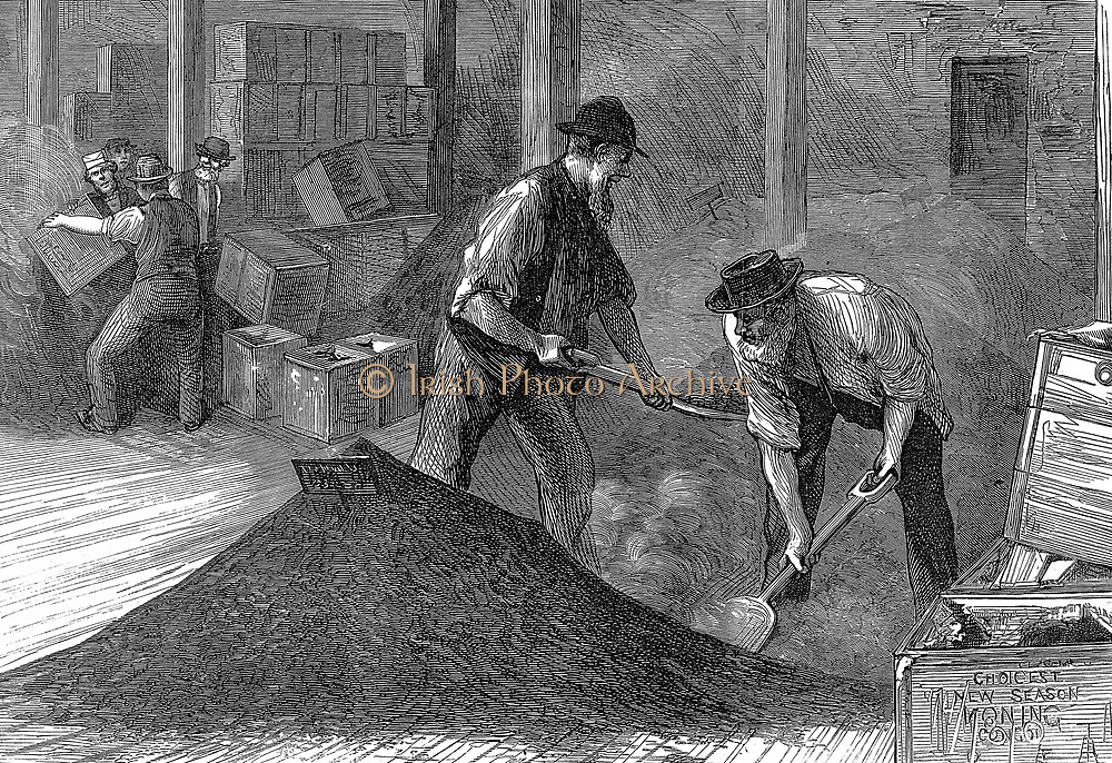 Tea warehouses of the East & West India Dock Company, London. Refilling tea chests after bulking (remixing after journey as smaller leaves & dust worked to bottom of chests in passage) Wood engraving, 1874.