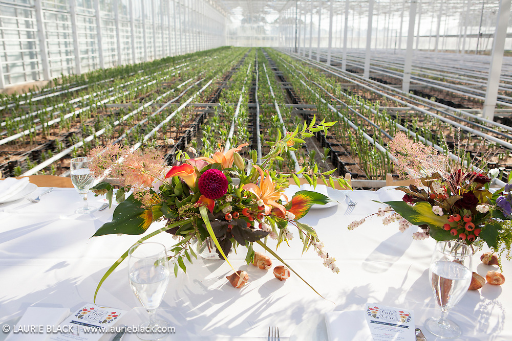 Dining event table with flower arrangements in greenhouse