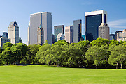 Central Park, New York City in springtime at Sheep Meadow with view of Midtown Manhattan Skyline.