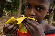 A boy eats a mango near the Essaout primary school in the village of Essaout, Senegal, on Thursday June 14, 2007...