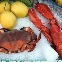 Mediteranean Fresh Catch