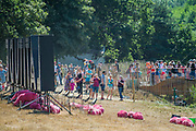The famous pink sheep find teh heat a bit too much and spend most of their time asleep - The 2018 Latitude Festival, Henham Park. Suffolk 14 July 2018