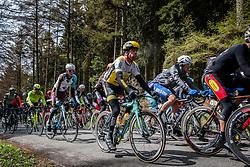 Bram Tankink (NED,206) of Team Lotto NL - Jumbo at C&ocirc;te de Wanne in the peloton with 95 km to go, the 102th edition of Li&egrave;ge-Bastogne-Li&egrave;ge race running 253 km from Li&egrave;ge to Li&egrave;ge, Belgium, 24 April 2016.<br /> Photo by Pim Nijland / PelotonPhotos.com<br /> <br /> All photos usage must carry mandatory copyright credit (&copy; Peloton Photos | Pim Nijland)