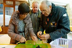 Les controleurs inspectent les truffes, les identifient (truffe melanosporum ou brumale en cette saison), evaluent leur qualite et les pesent.<br /> Le vendeur, au centre, attend le verdict