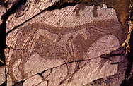 This Horse within a Horse at Tamghali is a unique Petroglyph, Kazakhstan