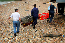 UK ENGLAND HASTINGS 6JUL06 - Fishermen Graham Coglan, David Peters, Paul White and 'the boy ashore' unload the day's catch on Hastings Stade. Hastings Stade is home to Britain's biggest fleet of beach-launched fishing boats with a history dating back more than a thousand years. The boats have to be hauled out of the sea after each trip, which stops them being more than about ten metres long. This means that they can only carry small amounts of gear and travel just a few miles. As a result the fleet has always fished in an ecologically sound way.  ..jre/Photo by Jiri Rezac / WWF UK..© Jiri Rezac 2006..Contact: +44 (0) 7050 110 417.Mobile:  +44 (0) 7801 337 683.Office:  +44 (0) 20 8968 9635..Email:   jiri@jirirezac.com.Web:    www.jirirezac.com..© All images Jiri Rezac 2006 - All rights reserved.