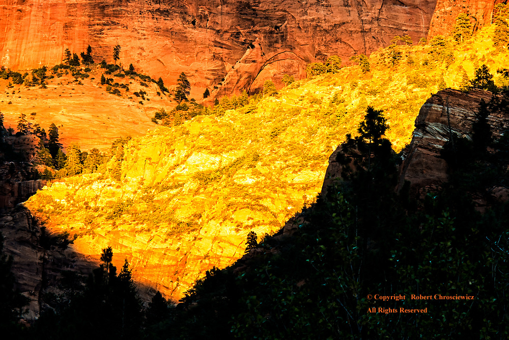 Golden Kolob: Sunset and a distant mountain side reflects a vibrant golden light and although short lived, this sight illuminates the valley in a seemingly surrealistic way, by the La Verkin Creek Trail in the Kolob Canyon, Zion National Park, Utah USA.