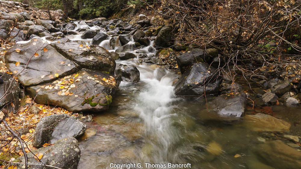 The water tumbles down over rocks along Beverly Creek in the Wenatchee National Forest.