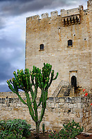 Cactus in front of Kolossi castle, medieval stronghold in Cyprus.