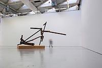 Joel Shapiro. Untitled
