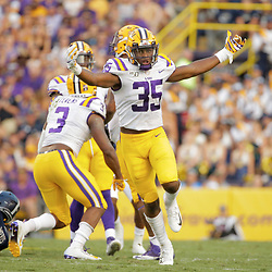 Aug 31, 2019; Baton Rouge, LA, USA; LSU Tigers linebacker Damone Clark (35) celebrates after a sack on Georgia Southern Eagles quarterback Shai Werts (1) during the first quarter at Tiger Stadium. Mandatory Credit: Derick E. Hingle-USA TODAY Sports