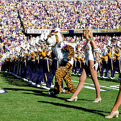 08 November 2008:  The LSU Golden Band takes to the field prior to kickoff of of Alabama's 27-21 overtime victory over the LSU Tigers at Tiger Stadium in Baton Rouge, LA.