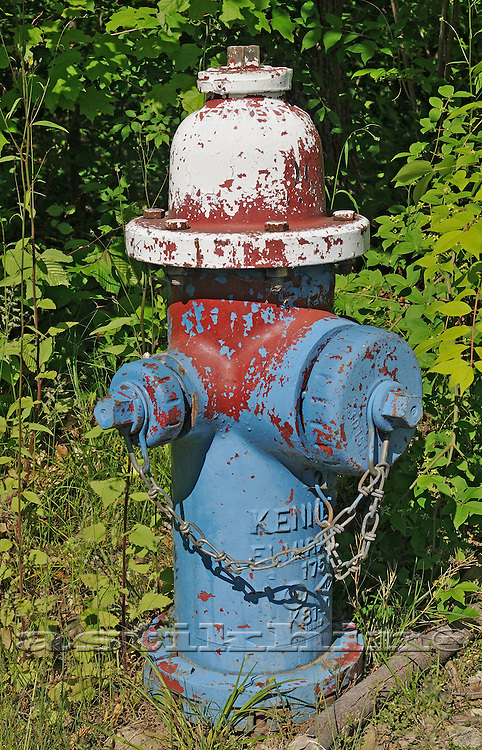 Hydrant blue white and brown.