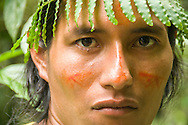 Portrait of man with face paint and fern headdress, Amazon, Ecuador.