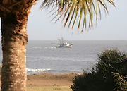 A shrimp boat running nets near a Jekyll Island beach.