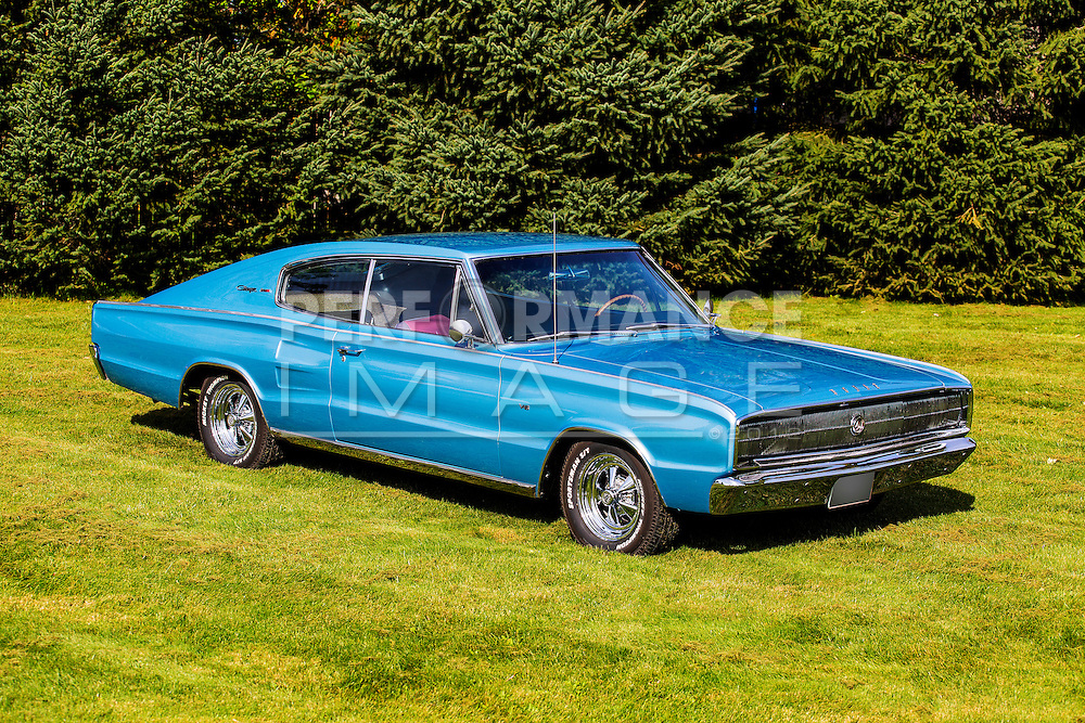 1966 Dodge Charger on grass