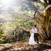 Erica & Brian | Wedding | 8.11.2014