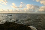 Marrum, 2 nov. 2006. Extreem hoog water in het Friese buitendijkse kweldergebied. Ruim 100 paarden op een dobbe in nood; 15 paarden reeds verdronken. (Friesland Buitendijks - Fryslân Bûtendyks - Noorderleeg - Noarderleech)