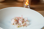 Shrimp (ama-ebi), smoked lime yogurt, radish, bee pollen.