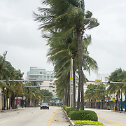 SEPTEMBER 9, 2017--MIAMI BEACH--FLORIDA<br /> A police car slowly cruises a deserted Washington Avenue in South Beach as hurricane Irma approaches South Florida.<br /> (Photo by Angel Valentin)
