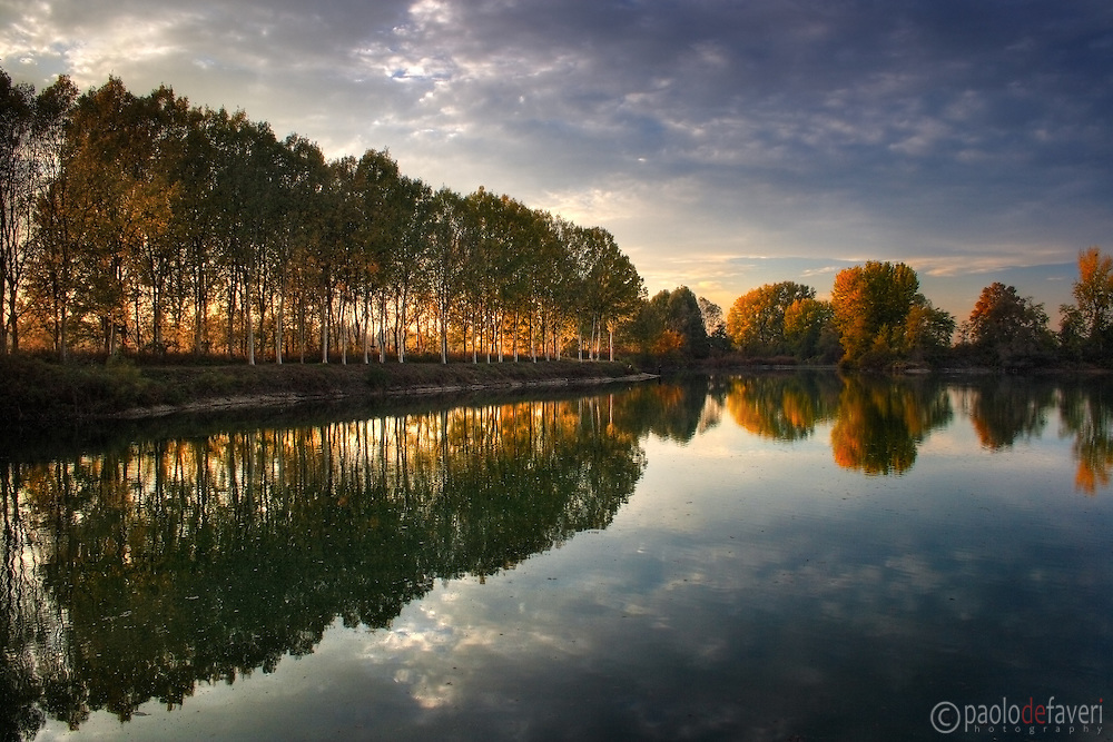 The beautiful low angled light of sunset shines through the branches and leaves of a row of poplar trees at the Po River bank nearby Carignano in Piedmont, Italy