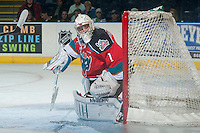 KELOWNA, CANADA - OCTOBER 7: Jackson Whistle #1 of Kelowna Rockets defends the net against the Swift Current Broncos on October 7, 2014 at Prospera Place in Kelowna, British Columbia, Canada.  (Photo by Marissa Baecker/Getty Images)  *** Local Caption *** Jackson Whistle;